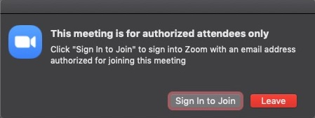 image of zoom preferences