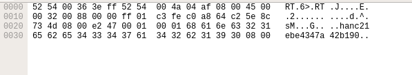 Image5: ICMP packet sent